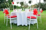 chairs-tables for party